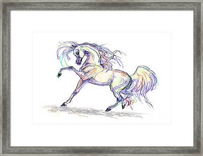 Arabian Stallion Talk Framed Print