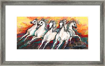 Arabian Sunset Horses Framed Print by Stacey Mayer