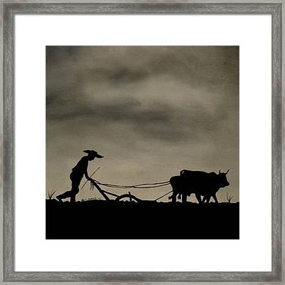 Arado Framed Print by Edwin Alverio