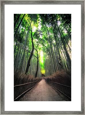 Arashiyama In Kyoto, Japan Framed Print