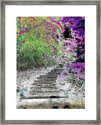 Arbor Pathway Framed Print by Tim Allen