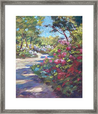 Arboretum Garden Path Framed Print by David Lloyd Glover
