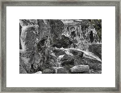 Arboretum Waterfall Bw Framed Print