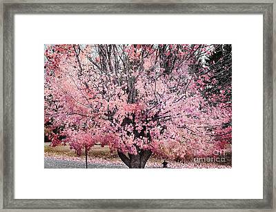 Arbre De Reve - 123b Framed Print by Variance Collections