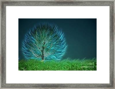 Arbrensens - A19 Framed Print by Variance Collections