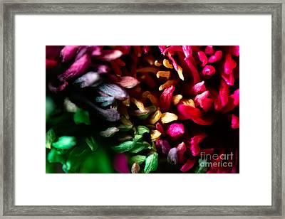 Arc-en-ciel Framed Print