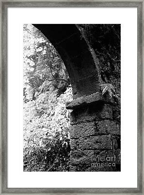 Arc Framed Print by Gaspar Avila
