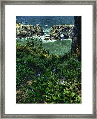 Arch Rock Delight Framed Print