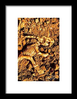 Extinct Framed Prints