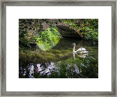 Arched Bridge And Swan At Doneraile Park Framed Print
