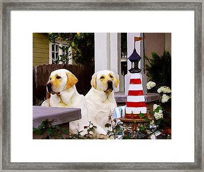 Archie And Jackie Framed Print by Alice Schear
