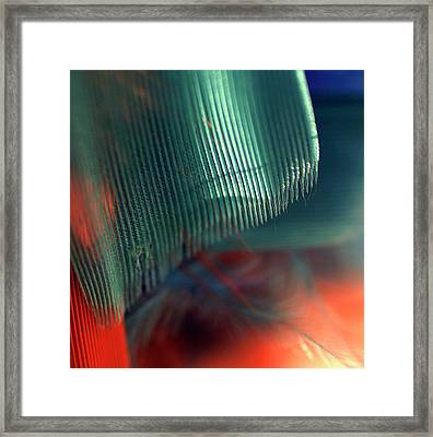 Framed Print featuring the photograph Architect Of A Feather by Irma BACKELANT GALLERIES
