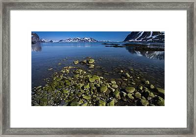 Arctic Canvas Framed Print by Biswarup Lahiri
