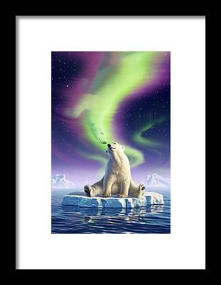 Arctic Framed Prints