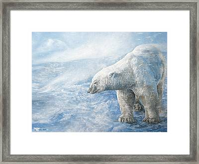 Arctic Sovereign Framed Print by Cara Bevan