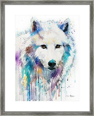 Arctic Wolf  Framed Print by Slavi Aladjova
