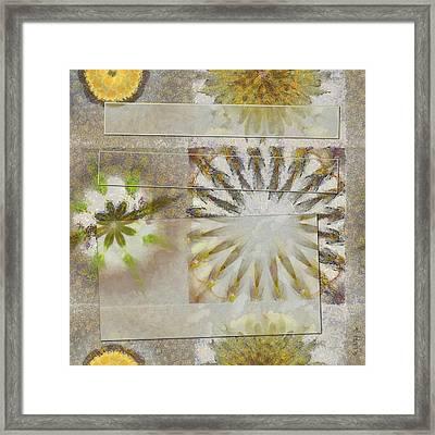 Arcuately Fancy Flower  Id 16164-225333-02131 Framed Print by S Lurk