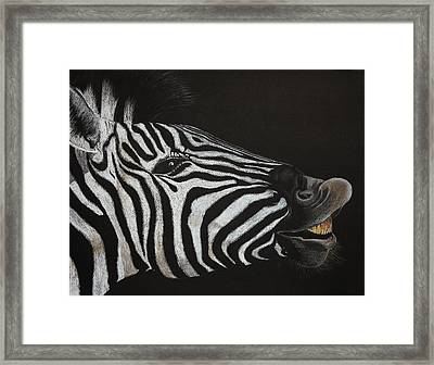Are My Teeth Clean Yet Framed Print by Don MacCarthy