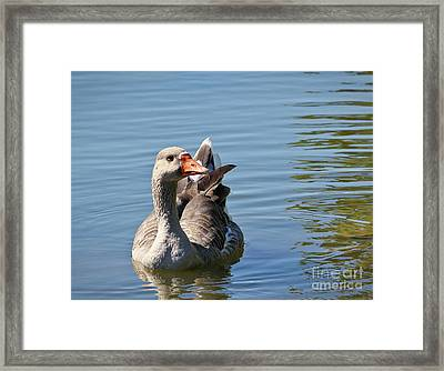Are You Talking To Me Framed Print