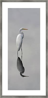 Argent Mirror #2 Framed Print