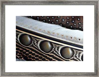 Argus Pheasant Feather Framed Print by Martin Harvey