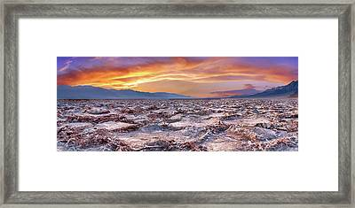 Arid Delight Framed Print