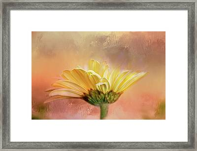 Arising In Beauty Framed Print by Terry Davis