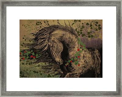 Framed Print featuring the drawing Aristocratic Horse by Melita Safran