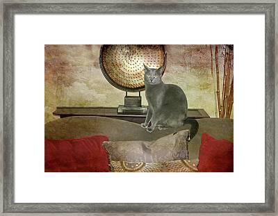 Cat-tastic Framed Print