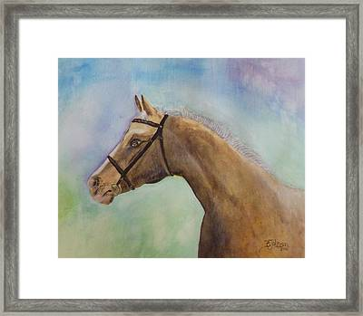 Arizona Framed Print by Beverly Johnson