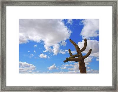 Arizona Blue Sky Framed Print by Susanne Van Hulst