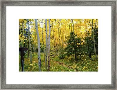 Arizona Fall Framed Print