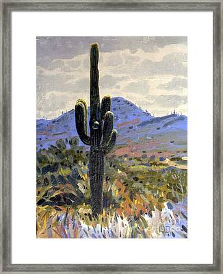 Arizona Icon Framed Print by Donald Maier
