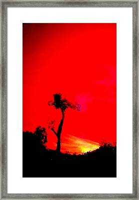 Arizona Framed Print