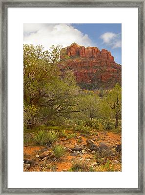 Arizona Outback 3 Framed Print