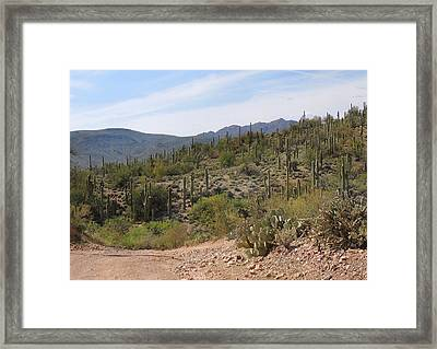 Arizona Proper Framed Print