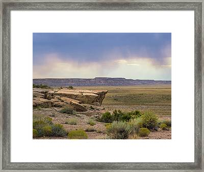 Arizona Rain Framed Print