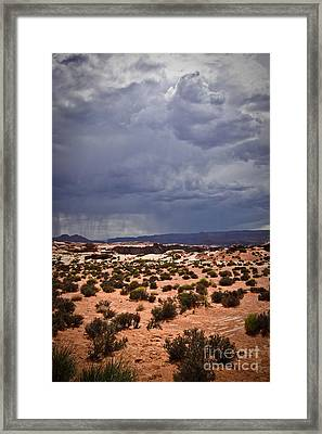 Arizona Rainy Desert Landscape Framed Print by Ryan Kelly
