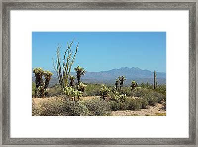 Arizona Scenic IIi Framed Print