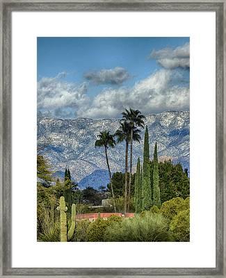 Arizona Snow Framed Print