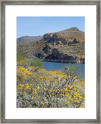 Arizona Spring Framed Print