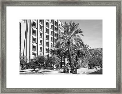 Arizona State University Statistical Sciences Framed Print