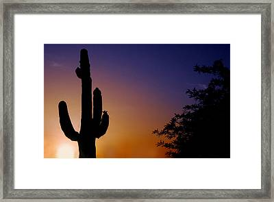 Arizona Sunset Framed Print