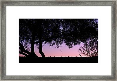 Arizona Sunset Friend Framed Print