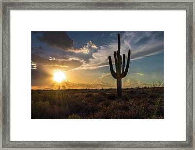 Arizona Vibes Framed Print