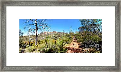 Framed Print featuring the photograph Arkaroo Rock Hiking Trail.wilpena Pound by Bill Robinson