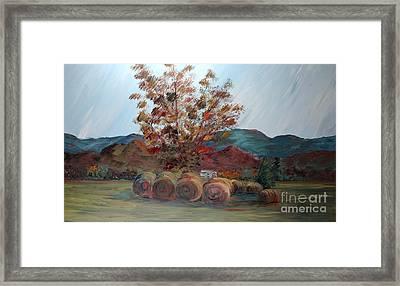 Arkansas Autumn Framed Print by Nadine Rippelmeyer