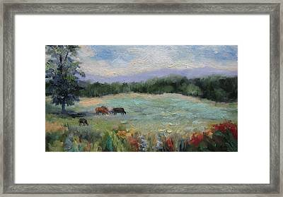 Arkansas Meadow Framed Print
