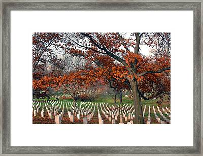 Arlington Cemetery In Fall Framed Print