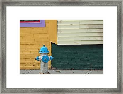 Arlington Hydrant Framed Print by Art Ferrier